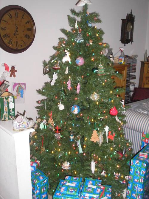 Christmas_2007_014